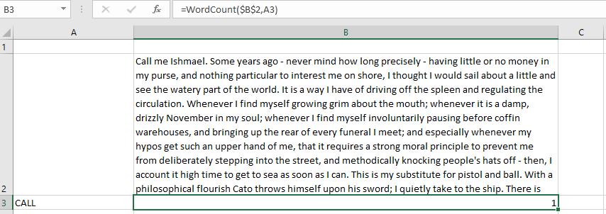 WordCount Custom VBA Function